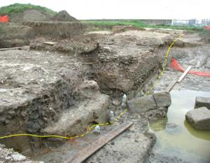 La composizione delle piogge e delle acque sotterranee nell'area di Castel Fusano in relazione alla struttura della pineta costiera